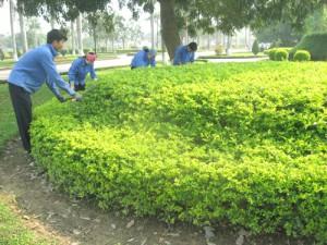 cong nhan mtdt thanh hoa